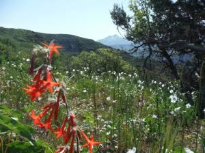 magic hikes in Paonia